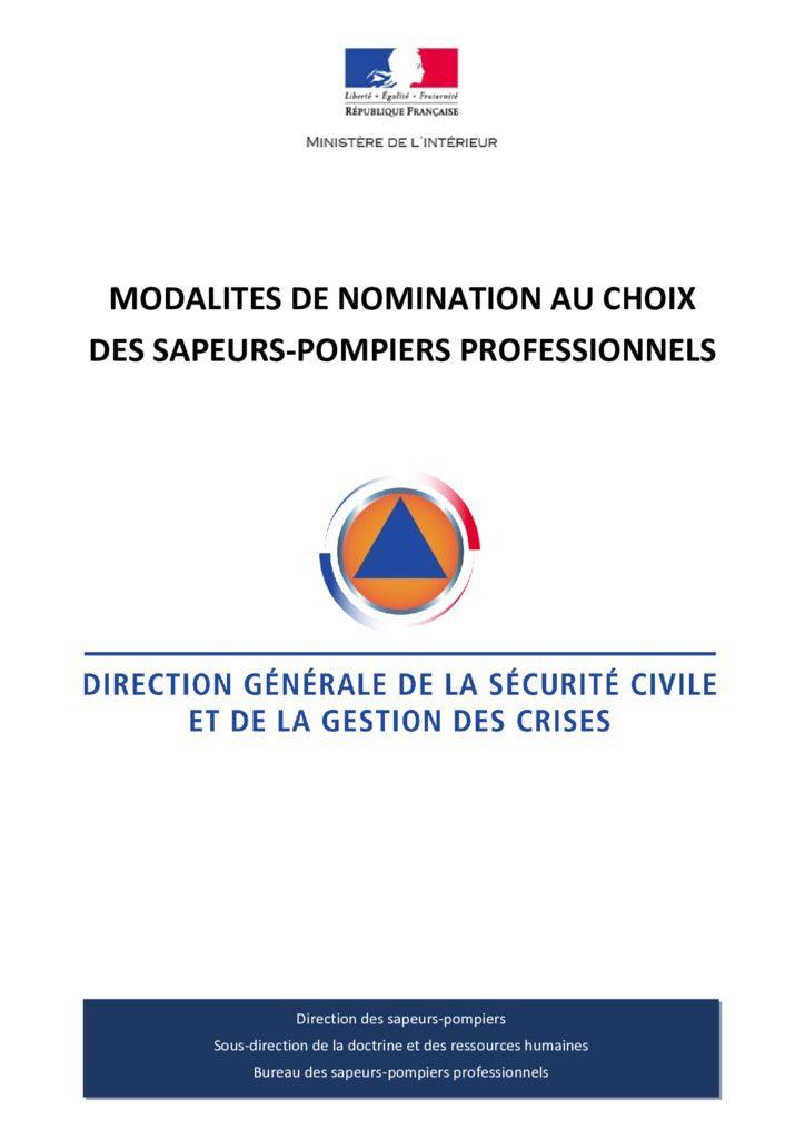 thumbnail of Fiche nomination au choix des SPP